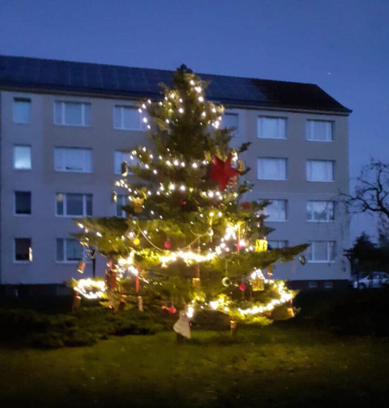 Leuchtende Tanne in Strasburg