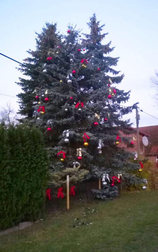 Weihnachten in Caselow