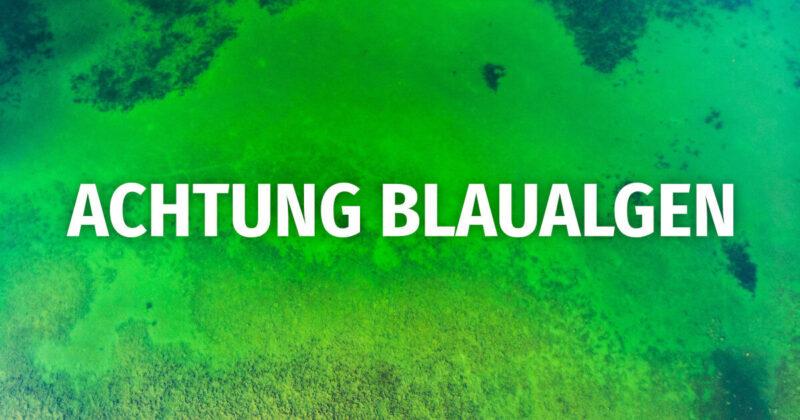 Badeverbot am Ludwigshofer See – Blaualgen bei Überprüfung der Badewasserqualität nachgewiesen