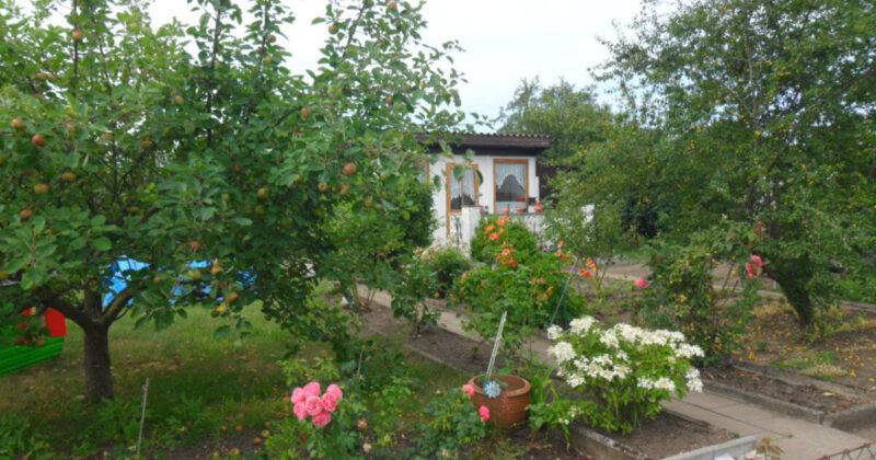 Gartensparte Erholung